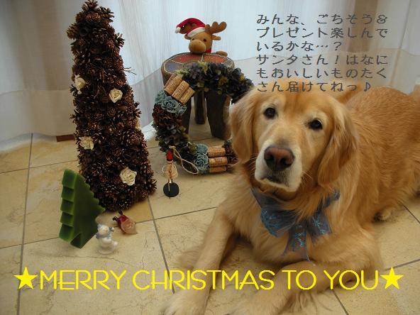 023 クリスマスカード はな.jpg
