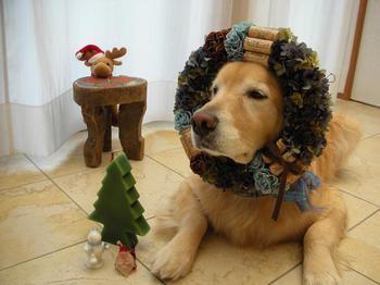 053 merry christmas!.jpg